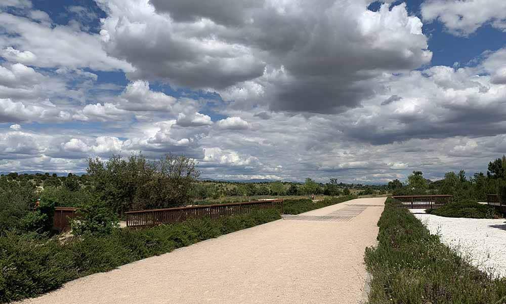 Mudanza a Valdebebas Parque Forestal
